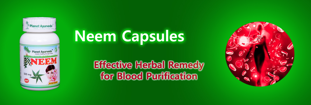 Neem Capsules - Effective Herbal Remedy   for Blood Purification